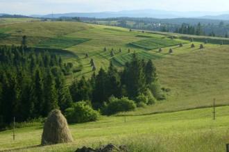 сільський туризм